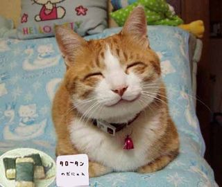 Kuchen Senyum